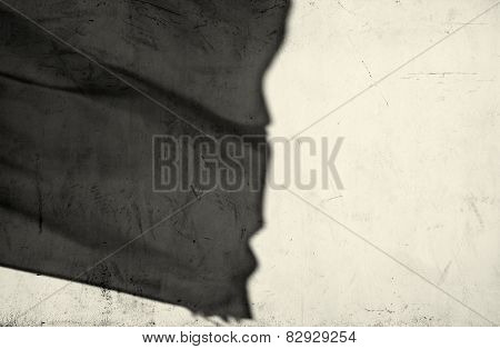 Flags shadow