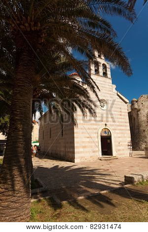 Old Orthodox Basilica And Bid Palm Tree Growing