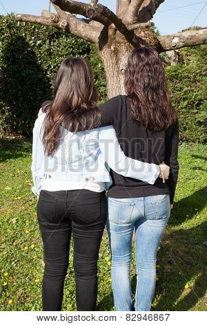 Young Women Standing On Grass Hugging Rear View