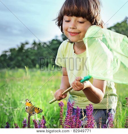 child catches a butterfly