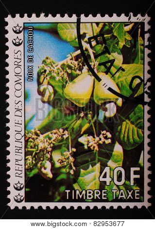Comoros - 1977 Year: Postage Stamp Printed Comoros Shows An Image Of Flowering Exotic Fruit