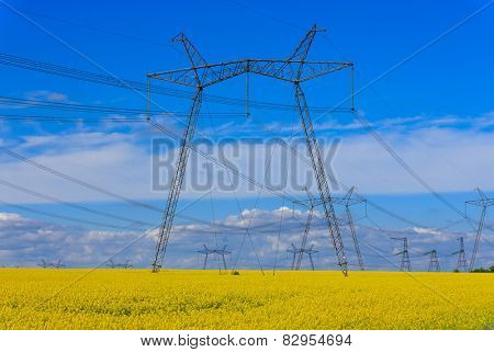 high voltage power line on rape field