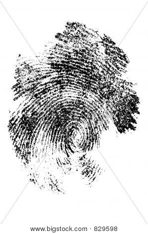 finger print in close up