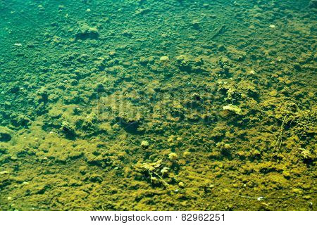 Polluted Dead Sea Bed Without The Slightest Life