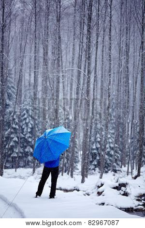 Man In The Forest On Wintertime