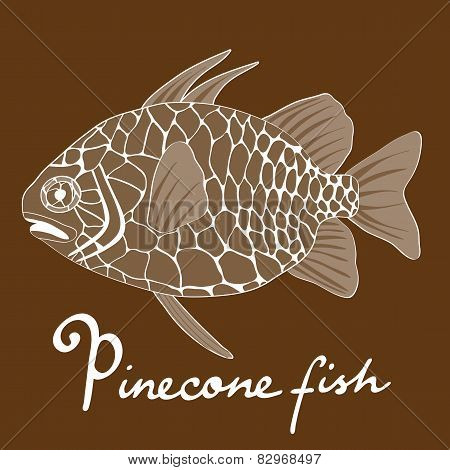 Pinecone fish