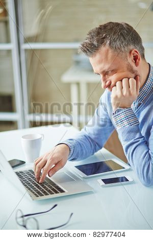 Serious white collar worker using laptop