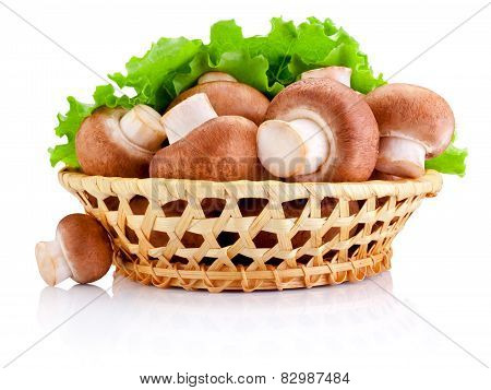 Fresh Field Mushroom In Basket And Leaves Of Green Salad Isolated On White Background