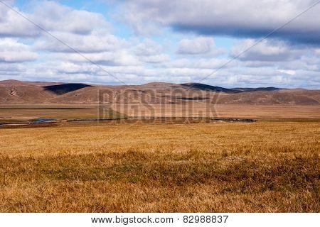 Grassland autumn scenery in China