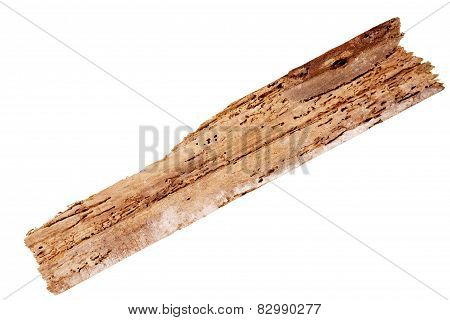 Old Rotten Wood Plank