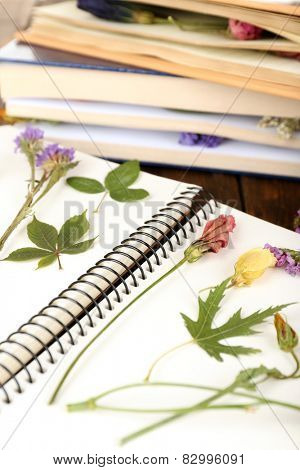 Dry up plants on notebook and books on table close up