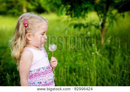 Adorable Little Girl Blowing Off Dandelion