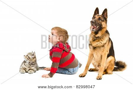 Cute boy, German shepherd and kitten