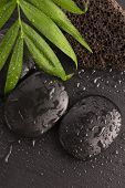 stock photo of pumice stone  - Green leaf on spa stone on wet black surface - JPG
