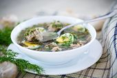 stock photo of sorrel  - sorrel soup with meatballs and eggs in a bowl - JPG
