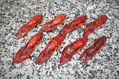 picture of craw  - Red river boiled crayfish in rows on grey kitchen granite worktop top view - JPG