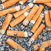 stock photo of ashes  - background from many cigarette stubs and ash - JPG
