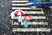 stock photo of pedestrian crossing  - pedestrian crossing with car in the heavy snowfall - JPG