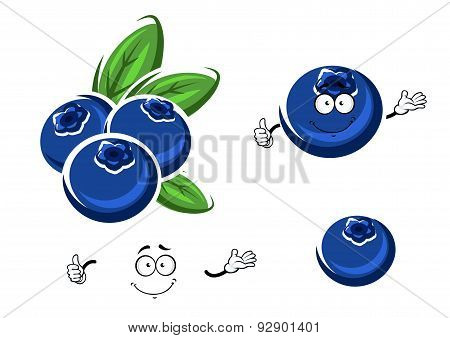 Cartoon fresh blueberry fruits on white