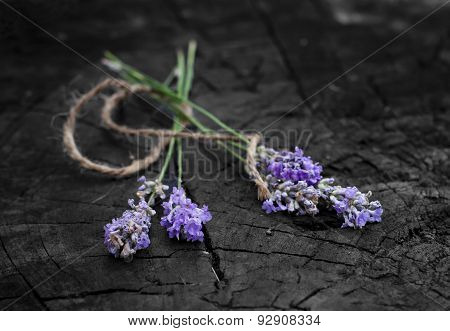 Four fresh lavender handmade bunches on the wooden stock