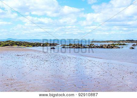 Beautiful sand beach in North Berwick, Scotland