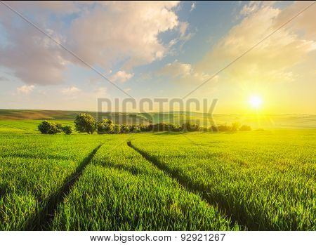 Beuatiful sunset in fields of Moravia, Czech Republic