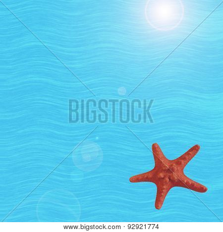 Starfish on sea background.