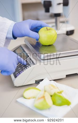 Scientist weighing apple in the laboratory