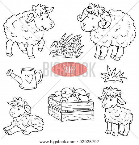 Set Of Cute Vector Family Sheep