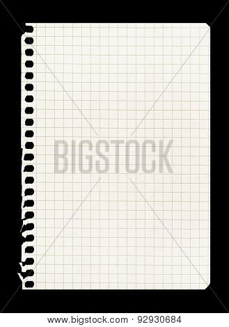 Blank sheet of notebook