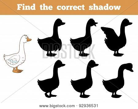 Find The Correct Shadow (goose)