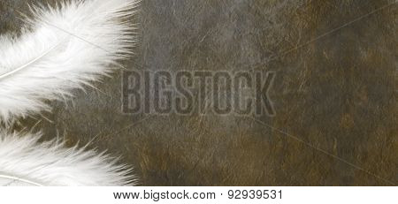White Feathers on a grunge dark stone effect background
