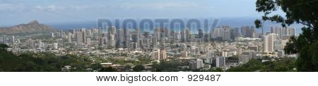 Panorama Of Honolulu