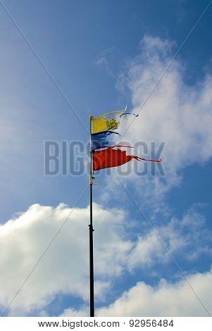 Venezuela Flag Torn