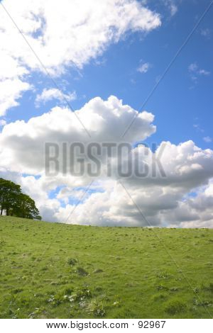 Land And Sky 1