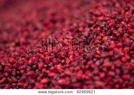 red dry berberis