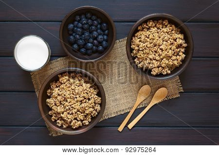 Breakfast Cereal with Blueberries and Milk