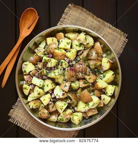 Potato Salad with Onion and Herbs