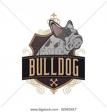 french bulldog with shield and golden ornaments