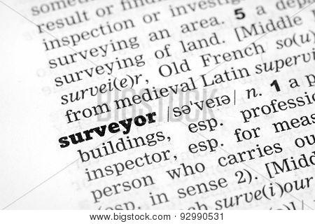 Dictionary Definition Surveyor