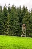 picture of grassland  - Wooden hunting tower on grassland in forest in spring season Beskids mountains - JPG