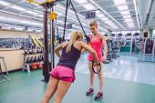 image of suspension  - Female personal trainer teaching to woman in a hard suspension training with fitness straps on a fitness center - JPG