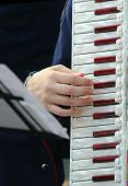 foto of accordion  - young woman plays the ancient accordion keyboard - JPG