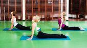 pic of cobra  - Girls practicing yoga in gym - JPG