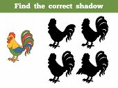 picture of roosters  - Game for children - JPG