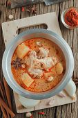 foto of curry chicken  - Chicken Mussaman Curry with ingredient Spices and herbs - JPG