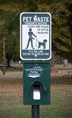 Постер, плакат: Собака парк