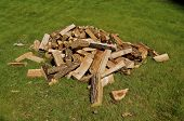 pic of firewood  - A pile of chopped firewood ready to be used in a campfire lies on the ground - JPG