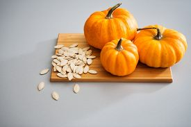 picture of seed  - A study in pumpkins - JPG
