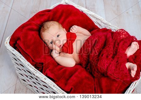 newborn boy lying in a basket on a red blanket with red butterflies